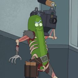 pickle rick armed